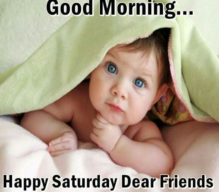 Good Morning Saturday Friends : Good morning happy saturday dear friends pictures photos