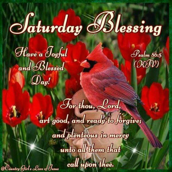 Saturday Blessing Pictures Photos And Images For