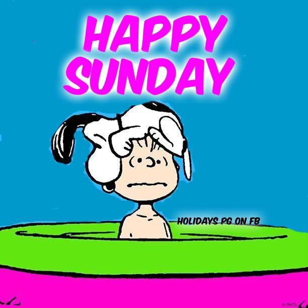 Happy Sunday Snoopy Pictures Photos And Images For