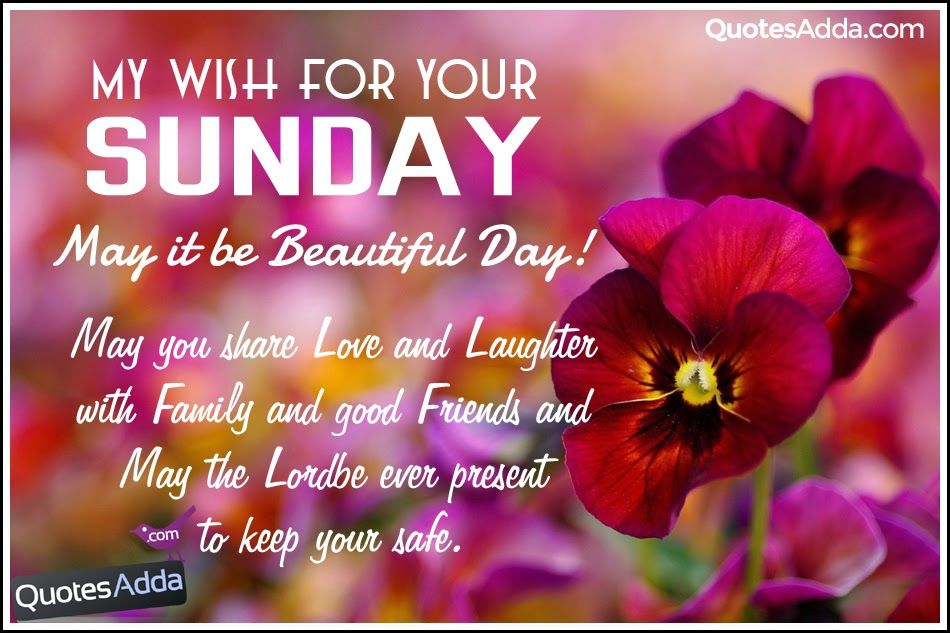 My Wish For Your Sunday Pictures, Photos, And Images For