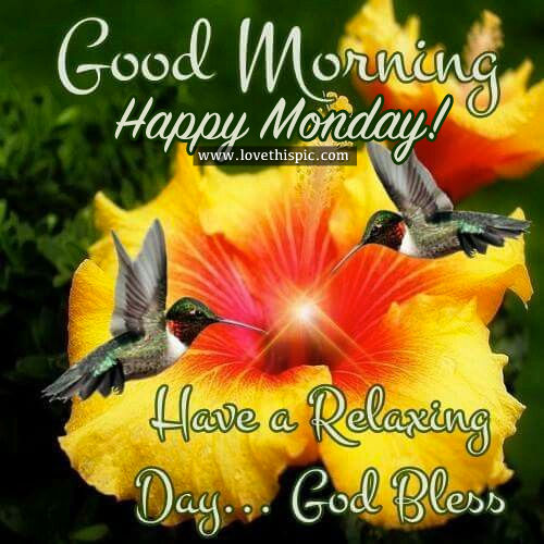 Good Morning Happy Monday Pictures Photos And Images