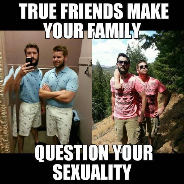 274364 True Friends Make Your Family Question Your Sexuality true friends make your family question your sexuality pictures
