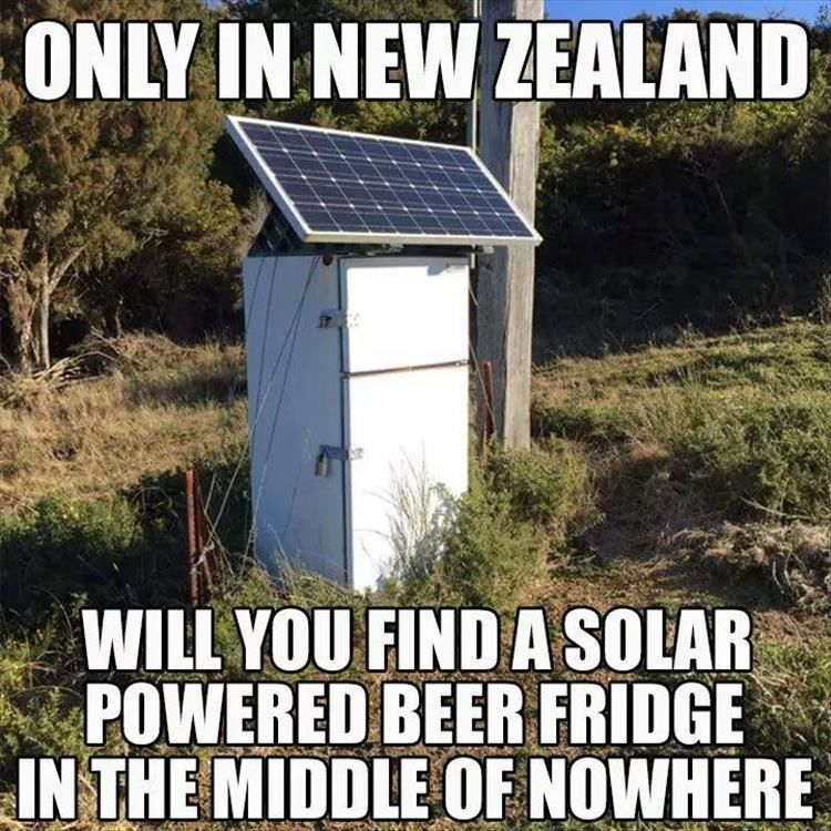 274373 Only In New Zealand - Free funny new zealand photos