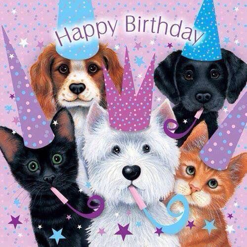 Adorable Happy Birthday Quote With Pets Pictures, Photos