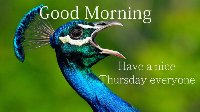 Good Morning Have A Nice Thursday Everyone Pictures