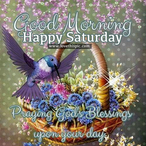 Good Morning Saturday Friends : Good morning happy saturday pictures photos and images