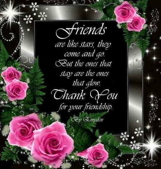 Beautiful Flowers Images With Friendship Quotes: Friends.. Pictures, Photos, And Images For Facebook