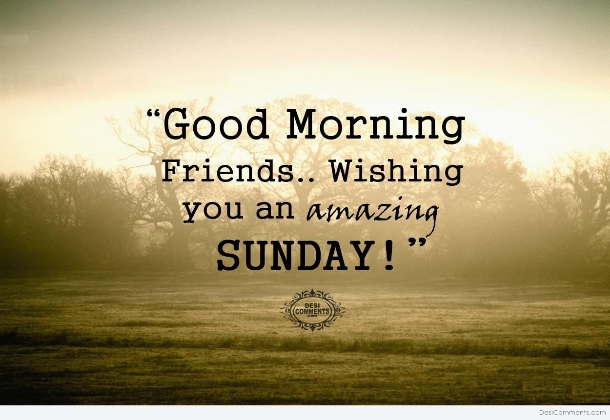 Good Morning Friends..Wishing You An Amazing Sunday