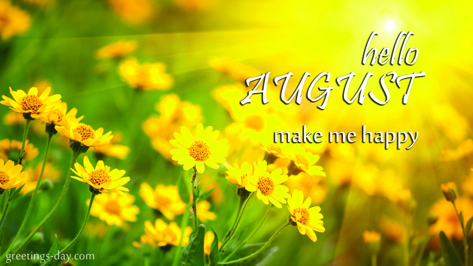 Hello August Make Me Happy Pictures Photos And Images For