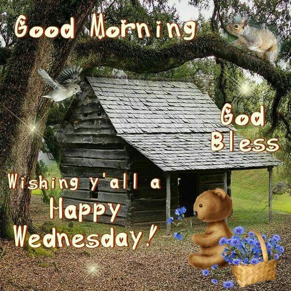Good Morning Meme Wednesday : Good morning wishing yall a happy wednesday pictures