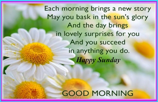Good Morning Sunday Happy : Happy sunday good morning pictures photos and images