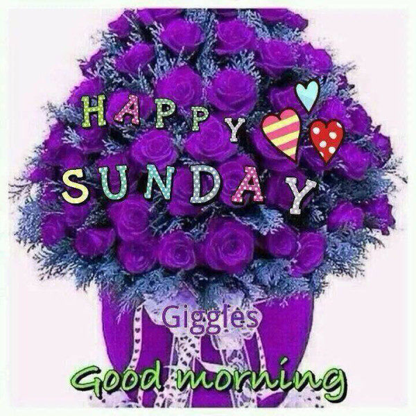 Good Morning Sunday Flowers Images : Happy sunday good morning pictures photos and images for