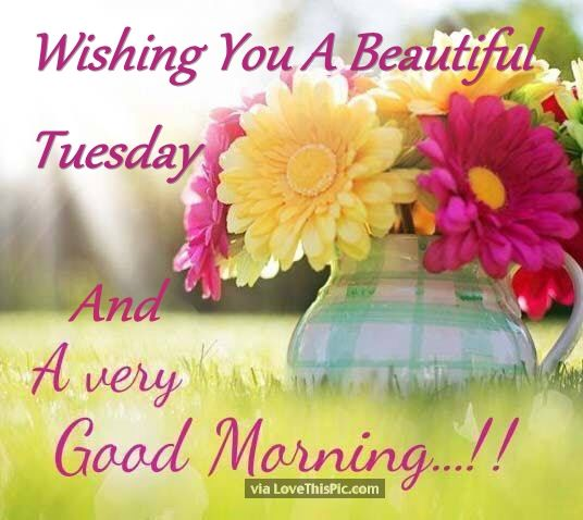 Wishing You A Beautiful Tuesday And A Very Good Morning Pictures Photos And Images For