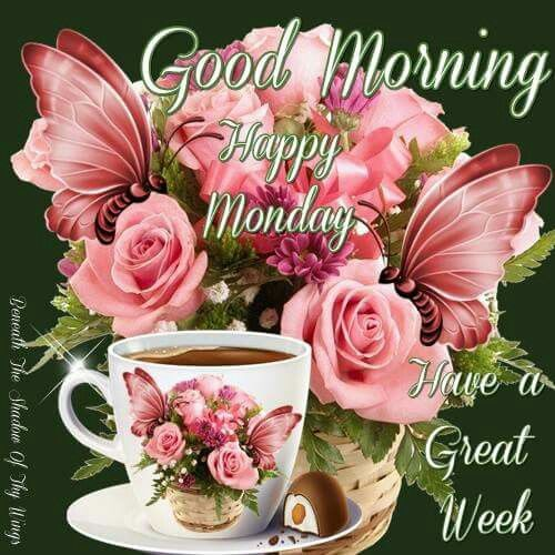 Good Morning Monday In French : Good morning happy monday pictures photos and images