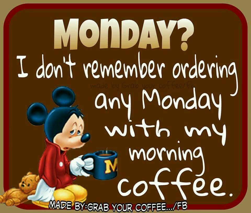 Monday Morning Humor Quotes: I Dont Remember Ordering A Monday Pictures, Photos, And