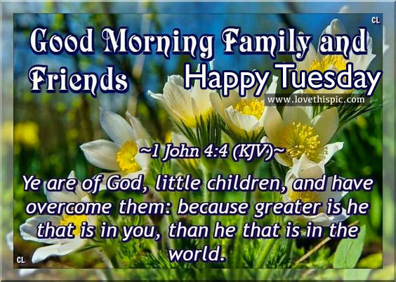 Happy Tuesday Good Morning Friends Family Pictures Photos