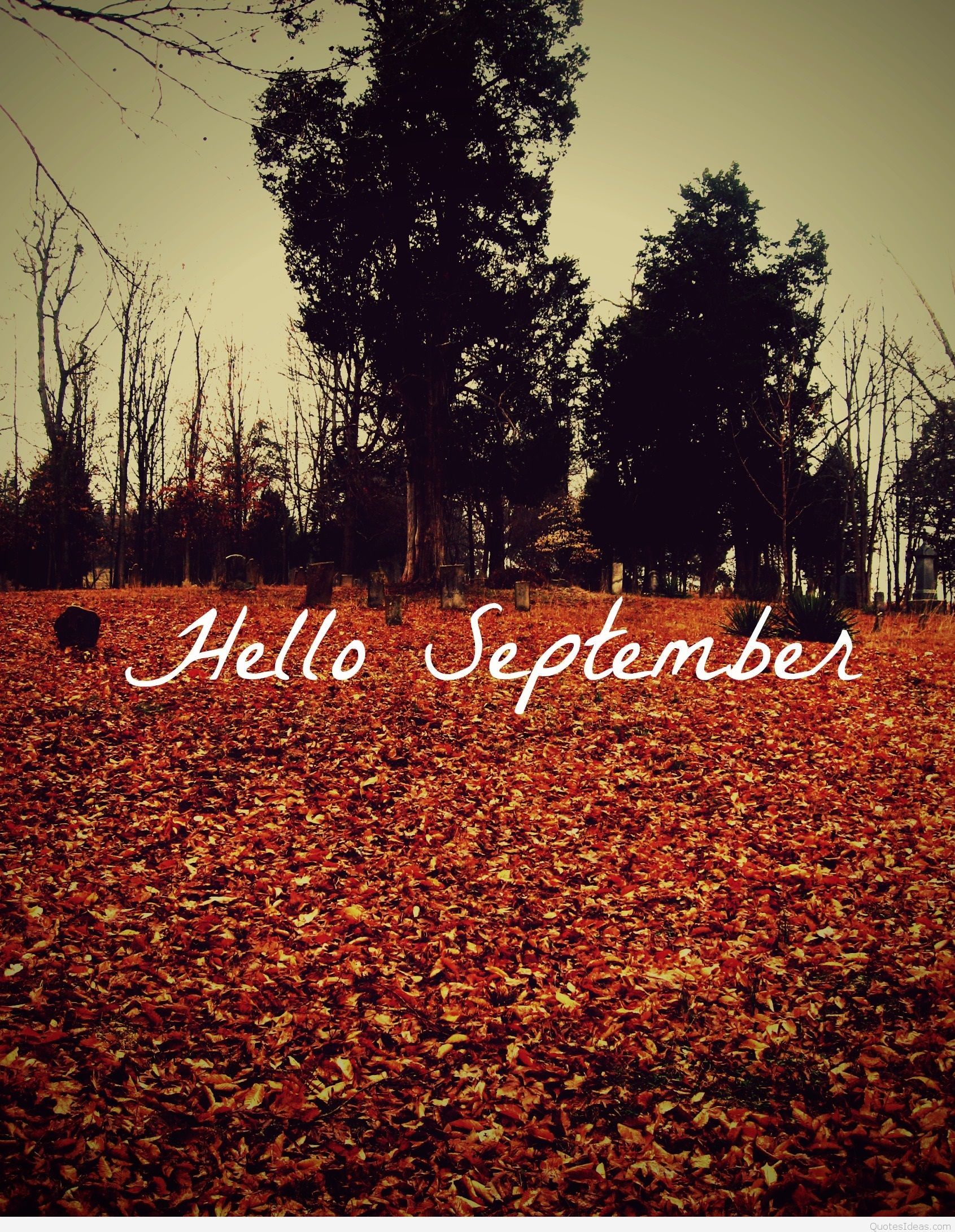 Hello September Pictures, Photos, And Images For Facebook, Tumblr,  Pinterest,.