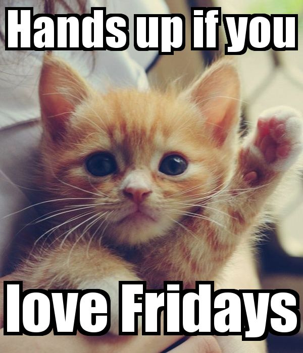 Hands Up If You Love Friday Pictures, Photos, And Images
