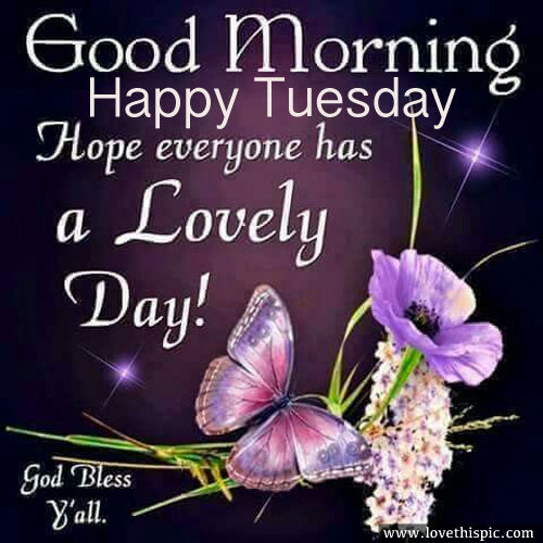 Good Morning Everyone Happy Tuesday : Good morning happy tuesday pictures photos and images