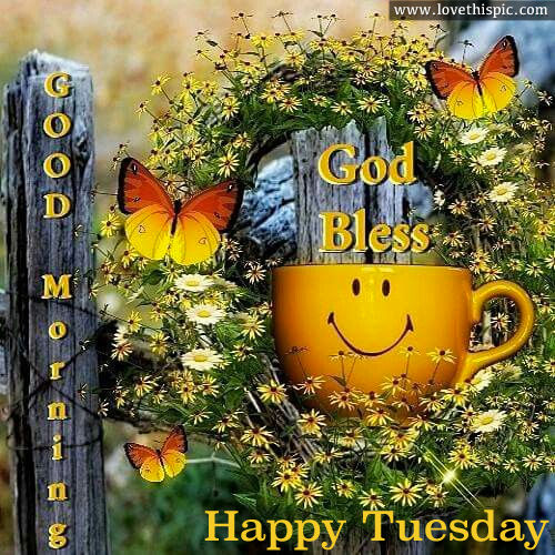 Image result for happy tuesday lovethispic
