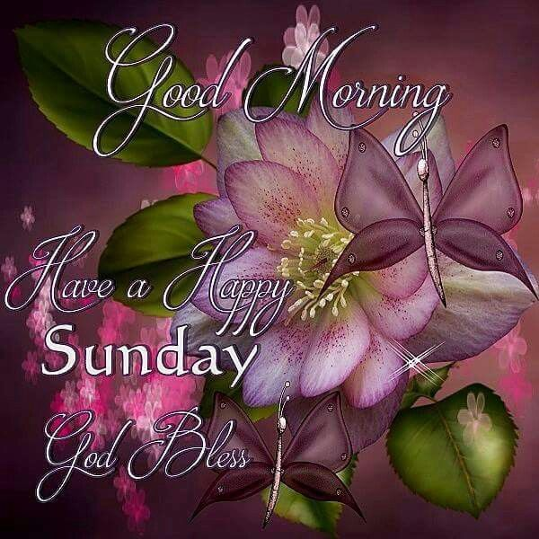 Good Morning Sunday Flowers Images : Good morning have a happy sunday god bless pictures