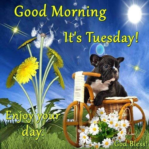 Its Tuesday Good Morning It...