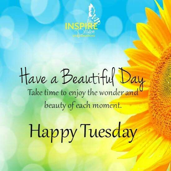 Good Morning Tuesday Messages : Have a beautiful day happy tuesday pictures photos and