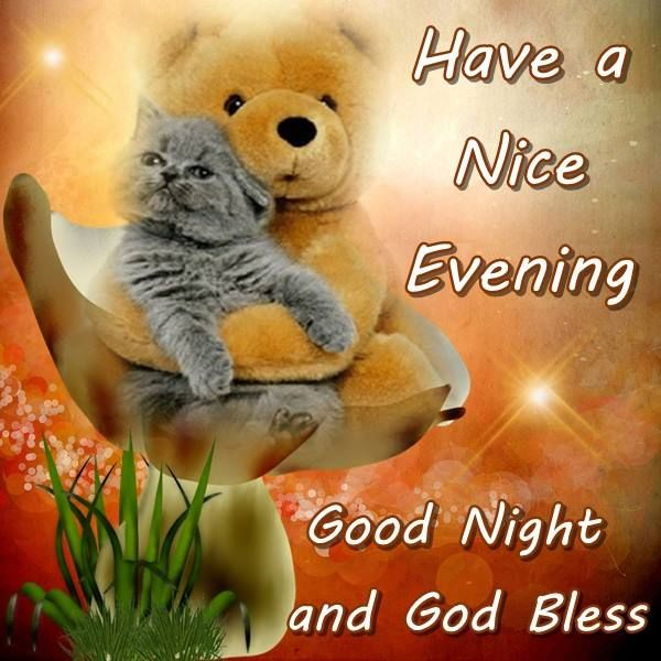 Nice Good Night Quotes With Images: Have A Nice Evening Good Night And God Bless Pictures