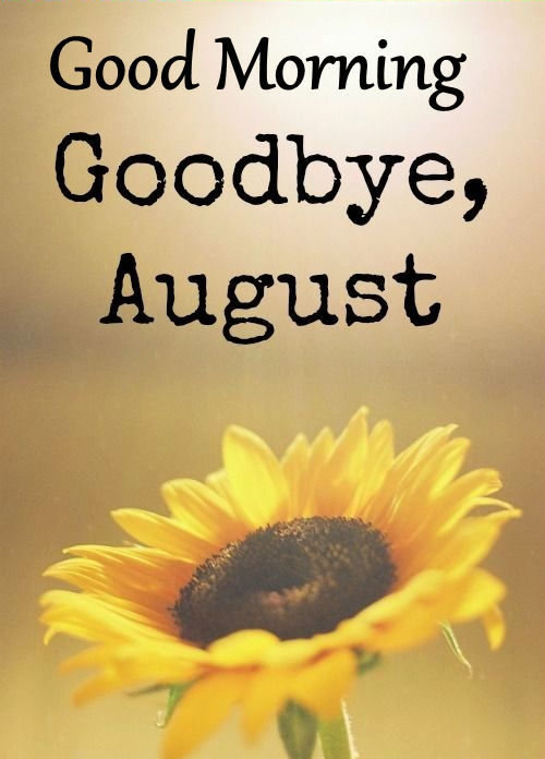 Good Morning Goodbye August Pictures, Photos, and Images