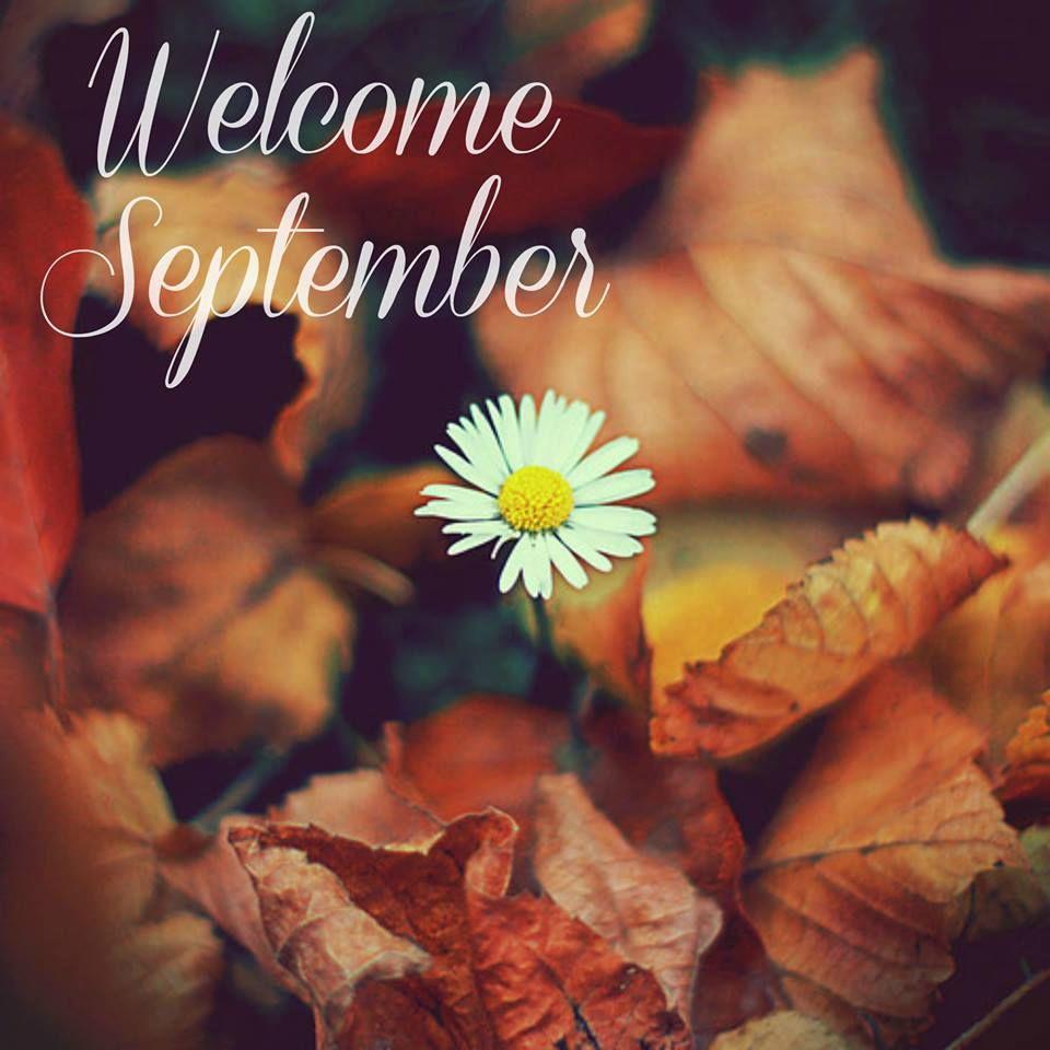 Hello September Bilder