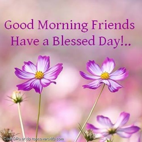 Good Morning Friends Have A Nice Day Images : Good morning friends have a blessed day pictures photos