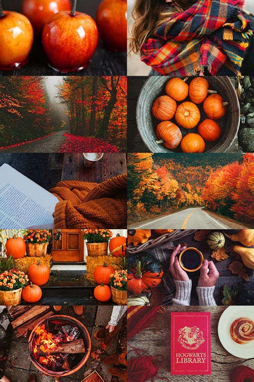 all about fall pictures photos and images for facebook