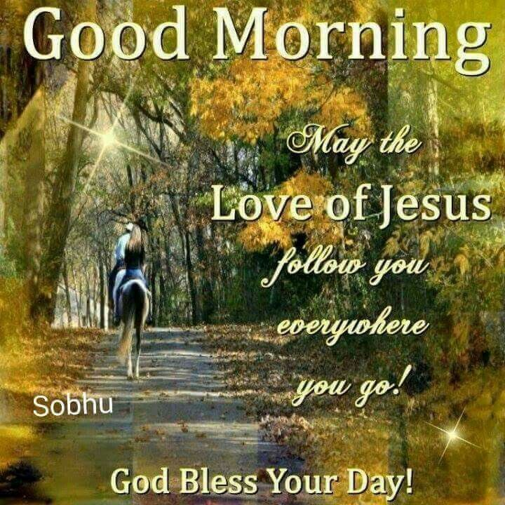 Good Morning God Bless Your Day : Good morning god bless your day pictures photos and