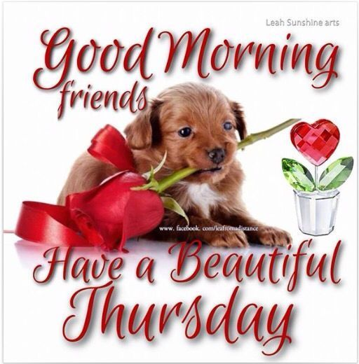 Good Morning Beautiful Thursday Images : Good morning weekend is almost here pictures photos and