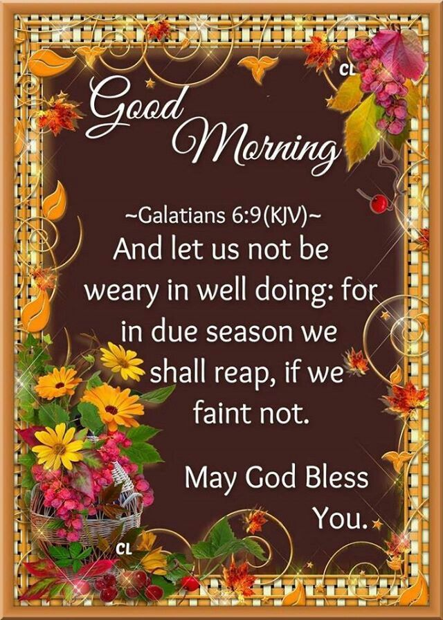 Good Morning, May God Bless You Pictures, Photos, and