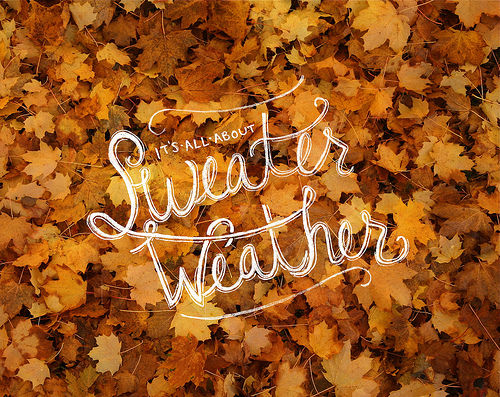 Its All About Sweater Weather Pictures Photos And Images