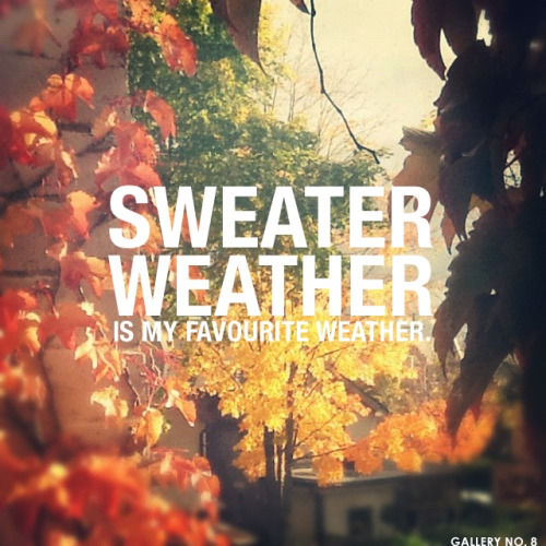 Tumblr Fall Quotes: Sweater Weather Pictures, Photos, And Images For Facebook