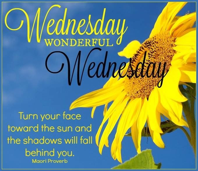 Wednesday Wonderful Wednesday Pictures Photos And Images