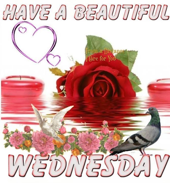 Have A Beautiful Wednesday Pictures Photos And Images