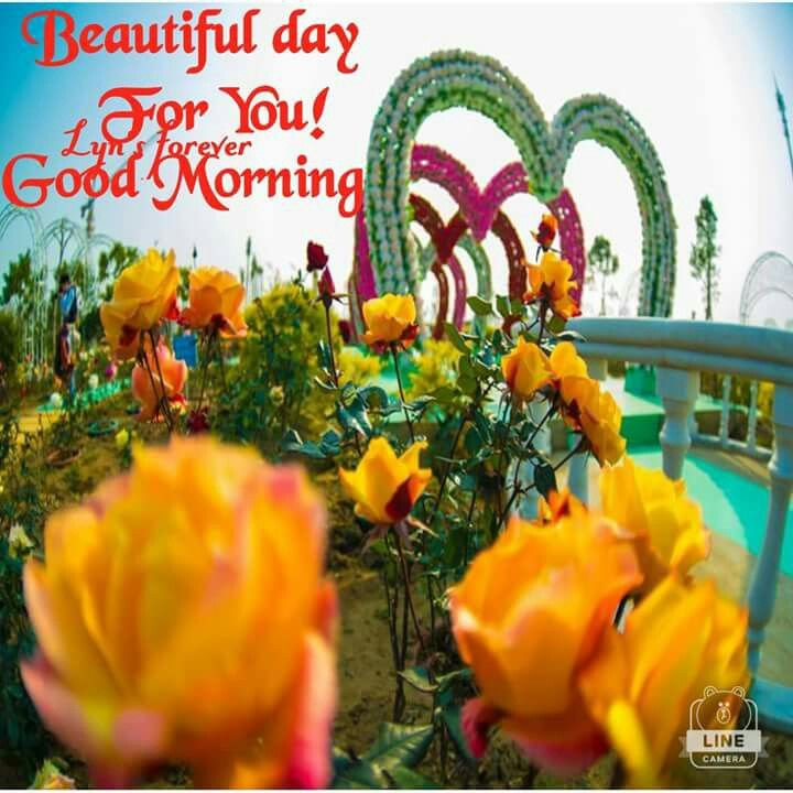 Good Morning Beautiful You Facebook : Beautiful day for you good morning pictures photos and