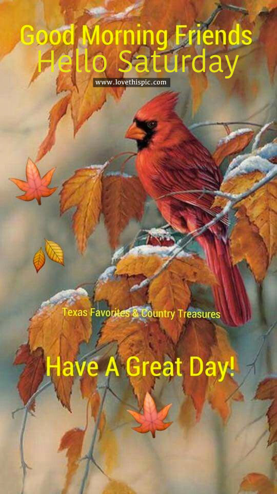 Good Morning Friends Hello Saturday Pictures Photos And