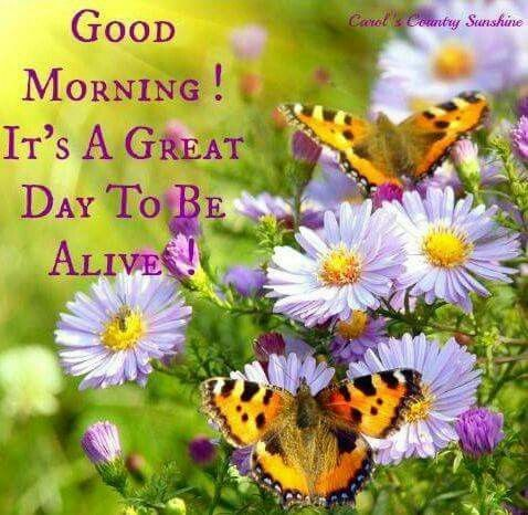 Image result for good morning friday a great day to be alive
