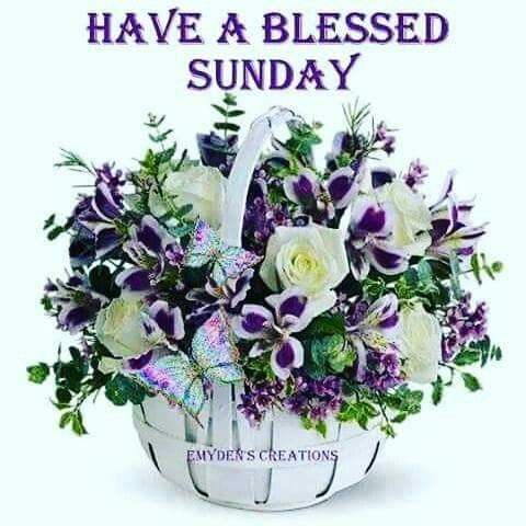Have A Blessed Sunday Pictures Photos And Images For