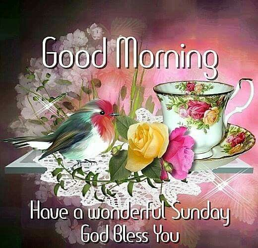 good morning have a wonderful sunday god bless you