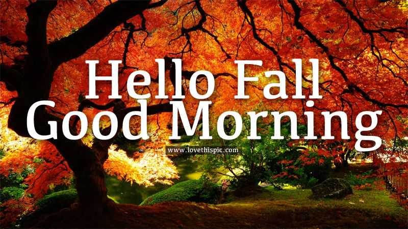 Image result for good morning friday fall images