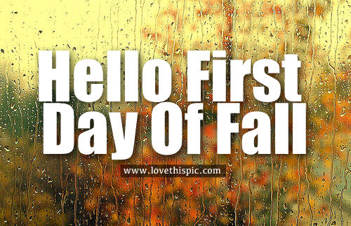 day fall Fist of