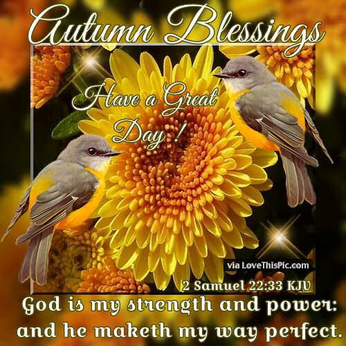 autumn blessings have a great day pictures photos and