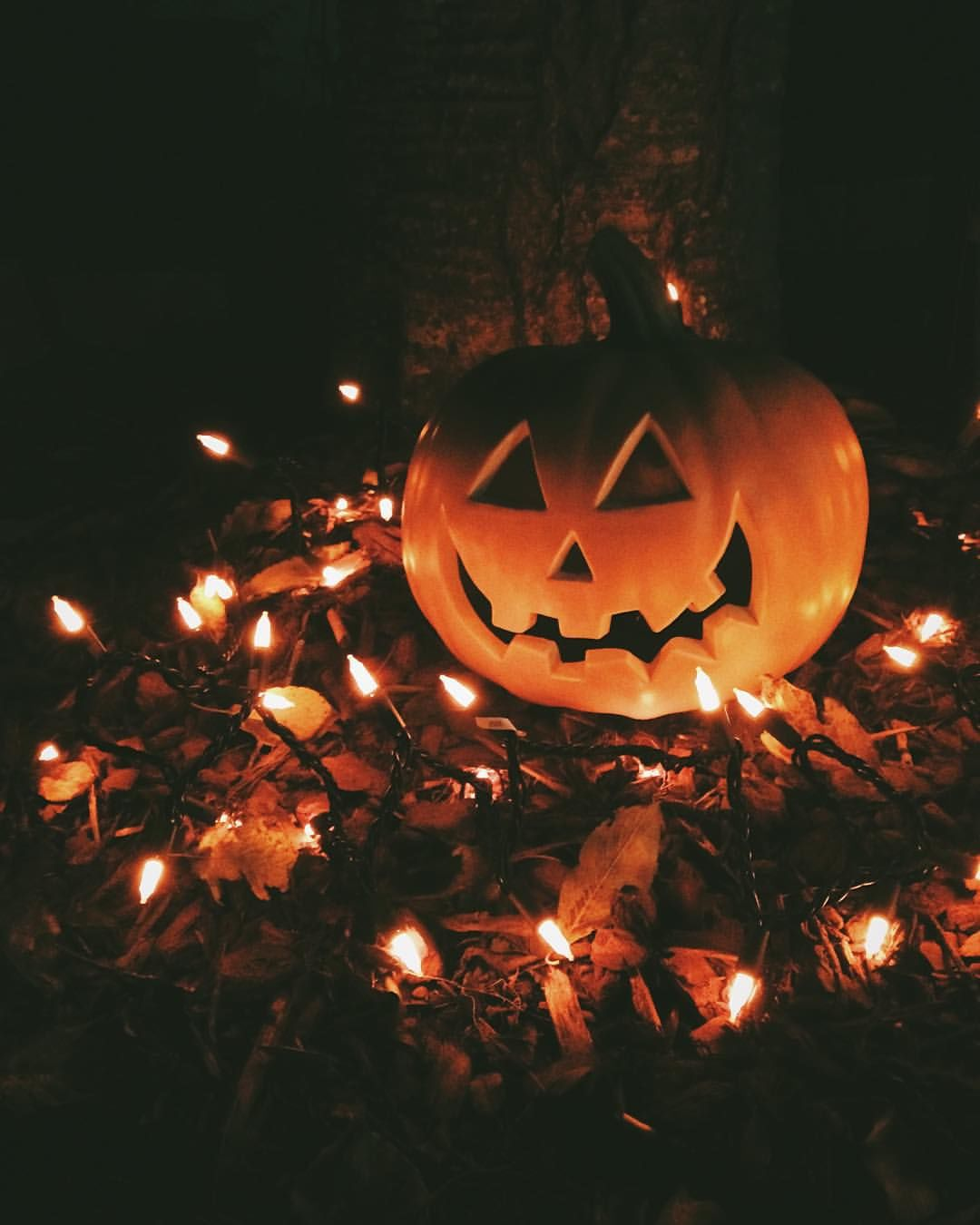Jack O Lantern And Lights Pictures Photos Images For