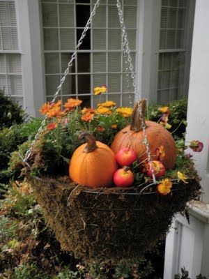 Fall Flowers Amp Mini Pumpkin Hanging Basket Pictures