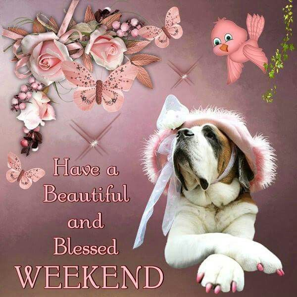 Have A Beautiful And Blessed Weekend Pictures Photos And